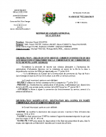 Conseil Municipal du 12 06 2015
