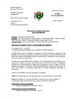 Conseil municipal du 21 01 2019